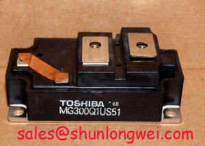 Read more about the article Toshiba MG300Q1US51