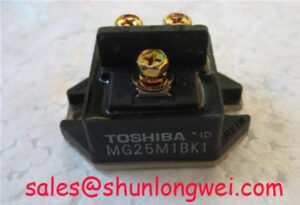 Read more about the article Toshiba MG25M1BK1