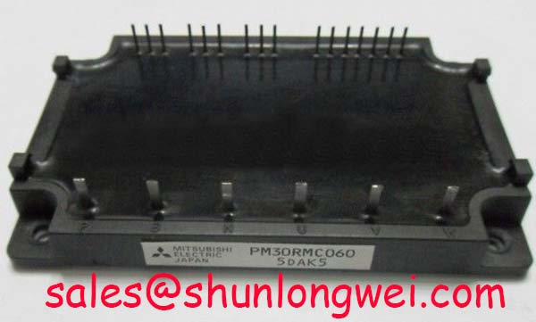 Read more about the article Mitsubishi PM30RMC060